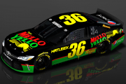 #36 Mello Yellow Camry