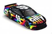 2020 Jimmie Johnson - Ally Pride Paint Scheme