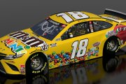 WEDS Kyle Busch #18 JGR M and M's Mini