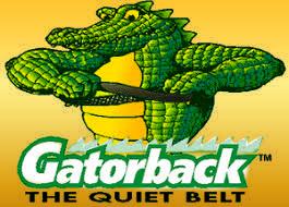 gatorback gator.jpg