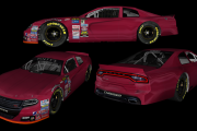 SnG Pinty's Mod Generic Dodge Charger Template