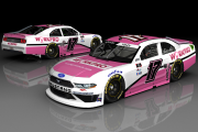 JJ Yeley #17 Workpro Tools - Martinsville