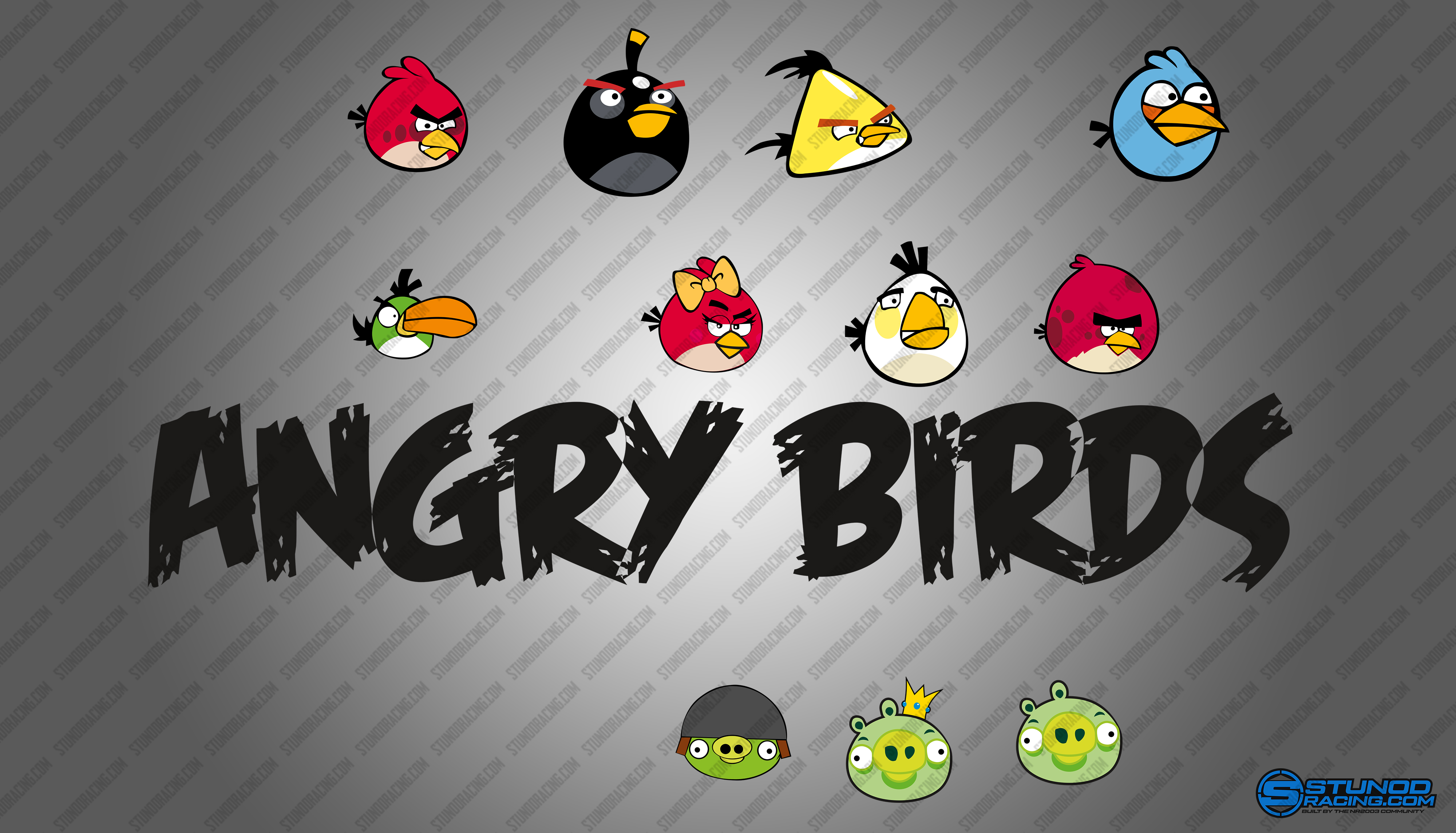 StunodRacing_AngryBirds_Logo.jpg